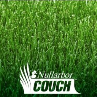 Nullarbor Couch - Instant Turf