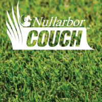 Nullarbor Couch (Instant Turf)