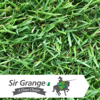 Sir Grange (Instant Turf)