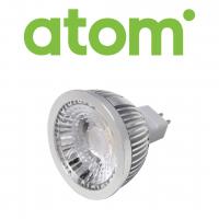 Atom Globes