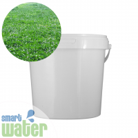Advanced Seed: White Clover Seed
