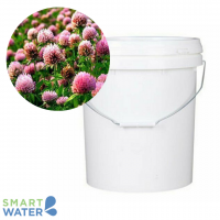 Advanced Seed: Strawberry Clover Seed